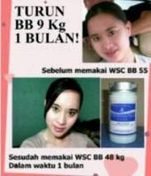 Agen resmi wsc biolo sukabumi